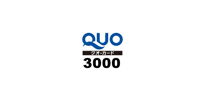 q3000