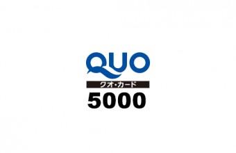 q5000